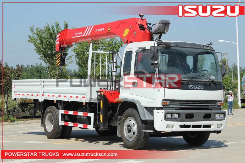 Philippines Custom Isuzu FTR Cargo Truck with Palfinger Telescopic Crane for sale