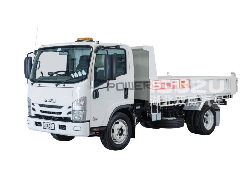 Isuzu 4*2 Light /Mini/ Tipper/Dumper/Site Dumpers/Cargo/ Dump Truck
